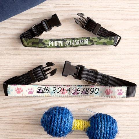 Collare Pet Collare personalizzato 47 x 2 cm