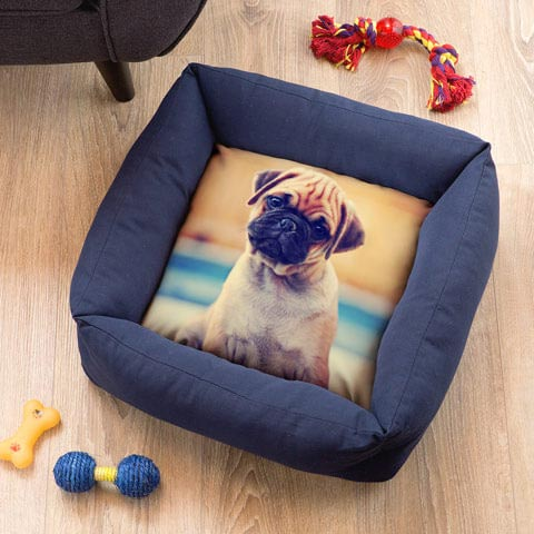 Cuccia Soft Pet 38 x 38 cm